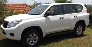 Toyota Prado White